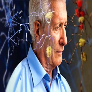 چگونه با آلزایمر مبارزه کنیم؟