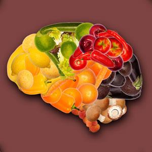 بهترین غذای مغز و حافظه چیست؟